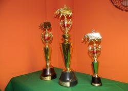 Jogos de Integração - Campeonato de Sinuca 2015